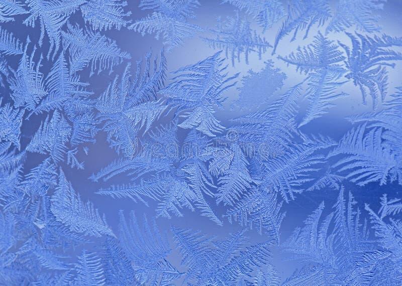Slut upp av frost royaltyfria bilder