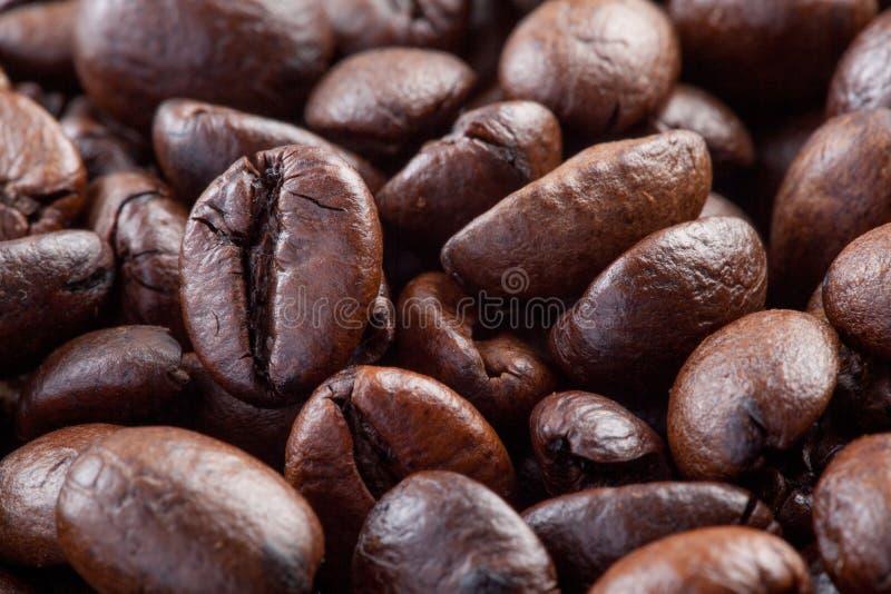 Slut upp av grillade kaffebönor arkivbilder