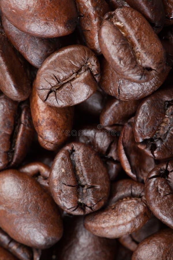 Slut upp av grillade kaffebönor royaltyfria bilder