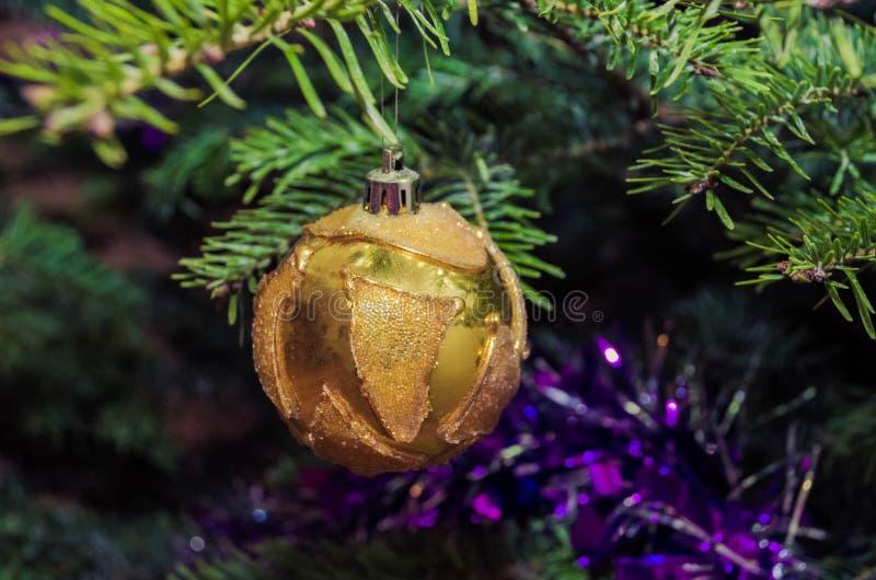 Slut upp av guld- julgrangarneringar royaltyfri foto
