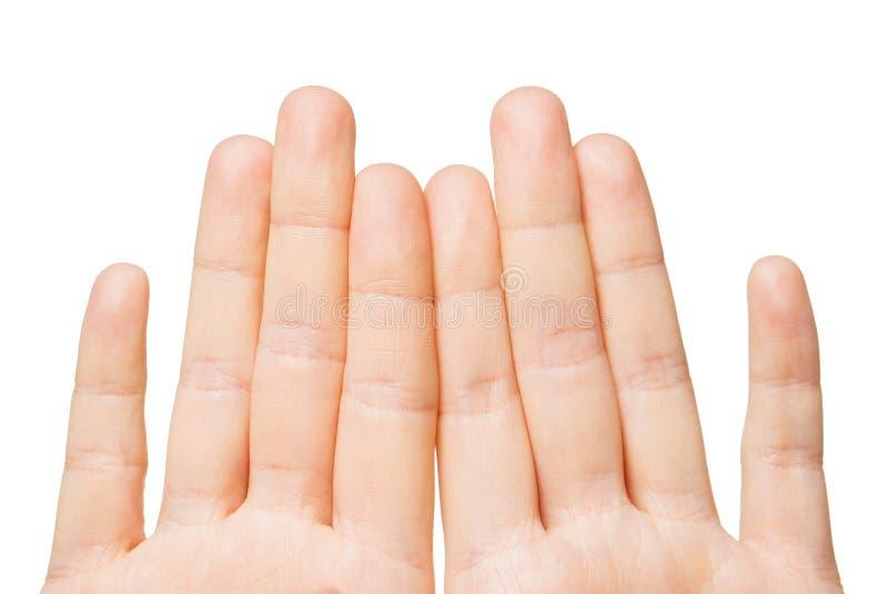 Slut upp av händer som visar åtta fingrar royaltyfri foto