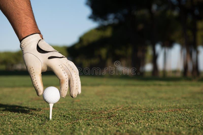 Slut upp av handen för golfspelare som förlägger bollen på utslagsplats arkivbild