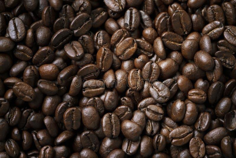 Slut upp av kaffebönor arkivfoto