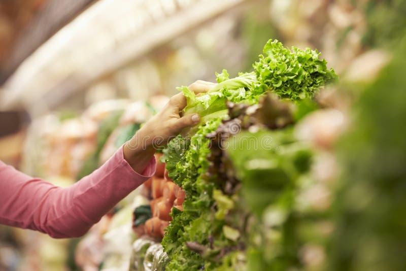 Slut upp av kvinnan som väljer sallad i supermarket royaltyfri fotografi