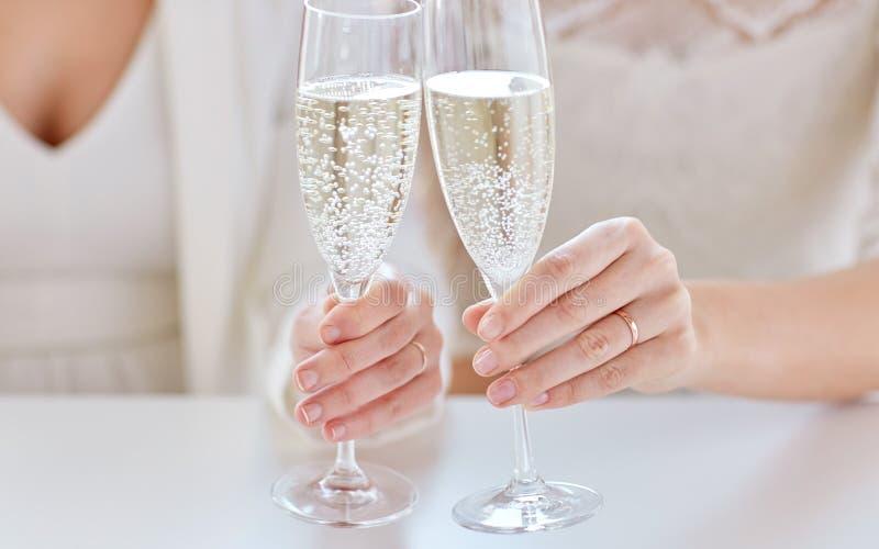Slut upp av lesbiska par med champagneexponeringsglas royaltyfri bild