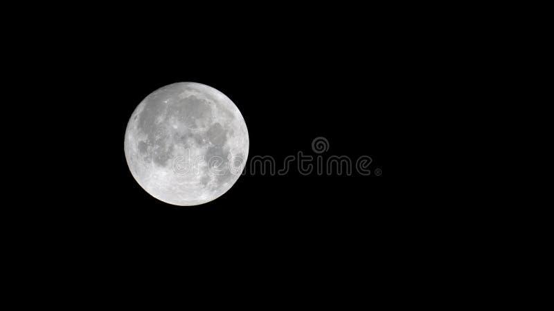 Slut upp av månen royaltyfria foton