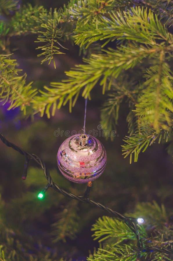 Slut upp av purpurfärgade julgrangarneringar royaltyfria foton