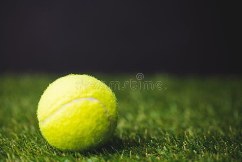 Slut upp av tennisbollen fotografering för bildbyråer