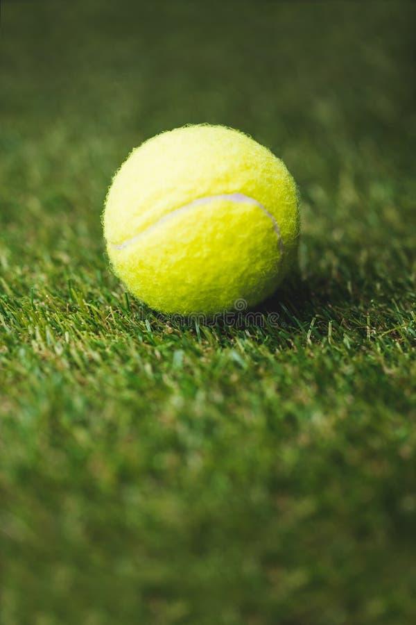 Slut upp av tennisbollen arkivbilder