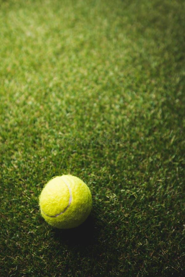 Slut upp av tennisbollen royaltyfria bilder