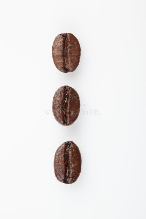 Slut upp av tre grillade kaffebönor arkivbilder