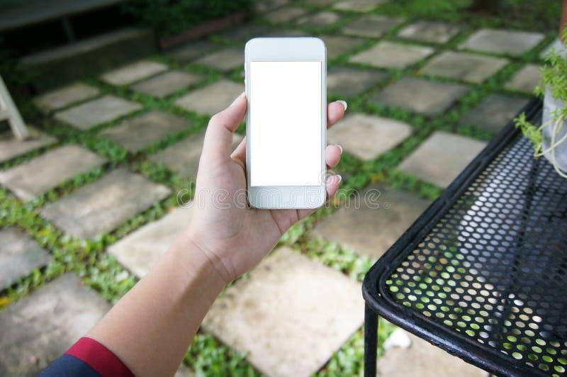 Slut upp av women& x27; spac för kopia för mellanrum för telefon för hållande cell för s-händer royaltyfri foto