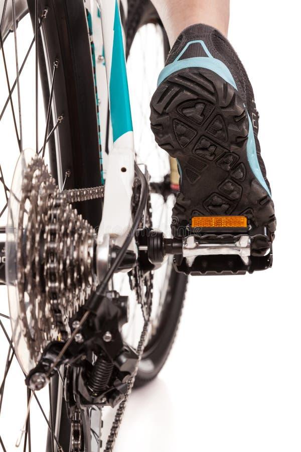 Slut upp cykeln för cyklist för bakre sikt den trampa fotografering för bildbyråer