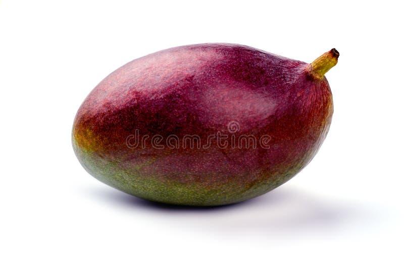 Slut upp den nya organiska mango på ljus bakgrund royaltyfri foto