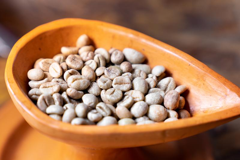 slut upp den rå gröna kaffebönan för selektiv fokus i krukmakerikopp royaltyfria foton