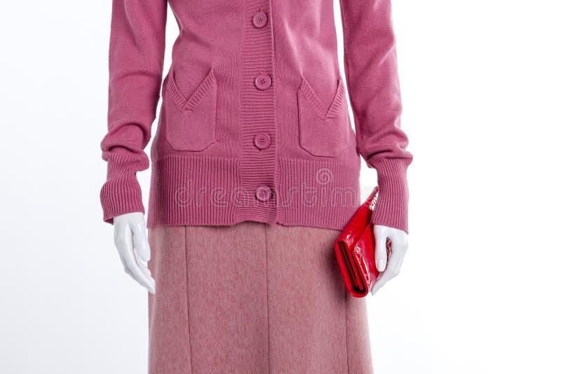 Slut upp den rosa tröjan och kjolen royaltyfri bild