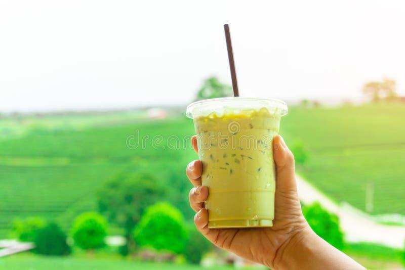 Slut upp den takeaway plast- koppen av läckert med is grönt te eller med is matcha och på härlig bakgrund för suddighetsgräsplann royaltyfri fotografi
