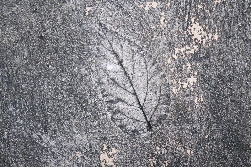 Slut upp fotoet av cementet royaltyfri fotografi