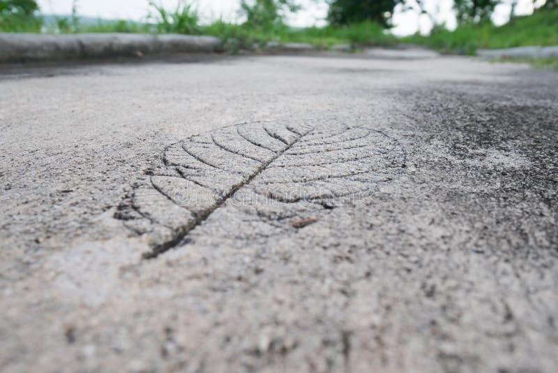 Slut upp fotoet av cementet royaltyfri foto