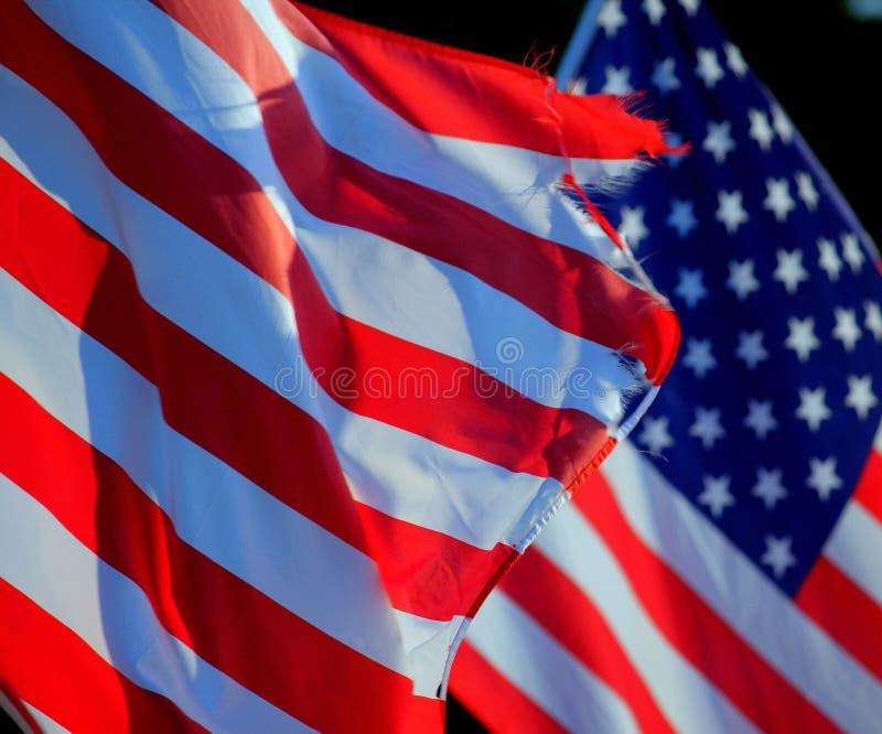 Slut upp isolerad söndersliten sönderriven U S amerikanska flaggan royaltyfri foto