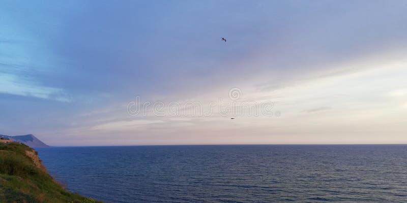 Slut upp Kontur av flyga fåglar på bakgrunden av havslandskapet royaltyfri foto