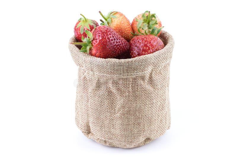 Slut upp nya jordgubbefrukter in i säckvävsäcken som isoleras på vit bakgrund royaltyfria foton