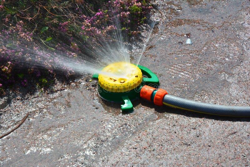 Slut upp på trädgårds- bevattna system Bevattna sprinkleren royaltyfri fotografi