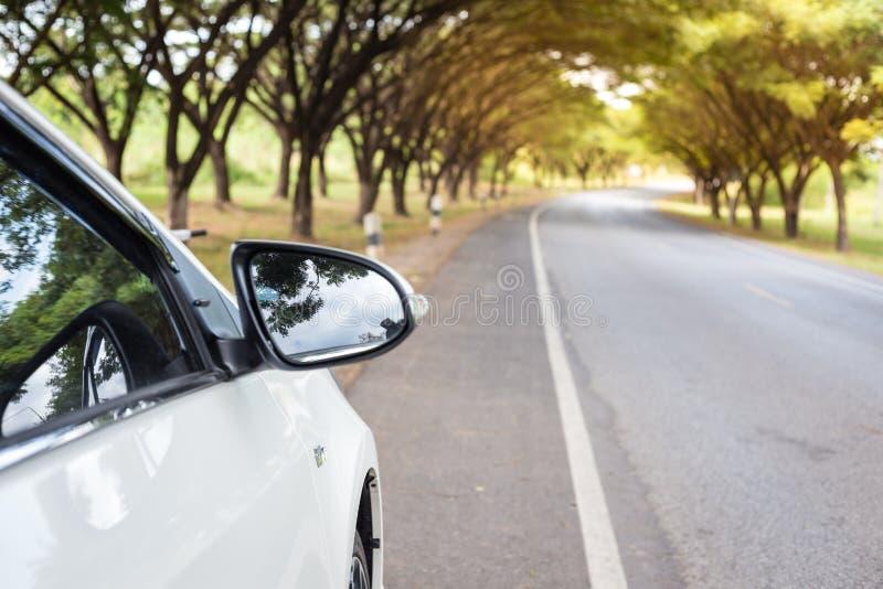 Slut upp vita bilar för Sideview spegel beside royaltyfri foto