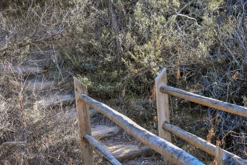 Slutet av en naturlig bro i skogen arkivfoto