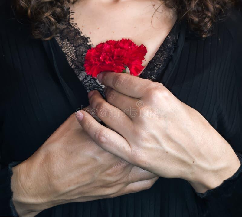 Slutet av kvinnlign räcker upp att rymma en röd nejlika mot hennes che arkivfoto