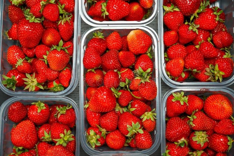 Slutet av nya röda mogna jordgubbar i genomskinlig plast- behållare boxas upp fotografering för bildbyråer