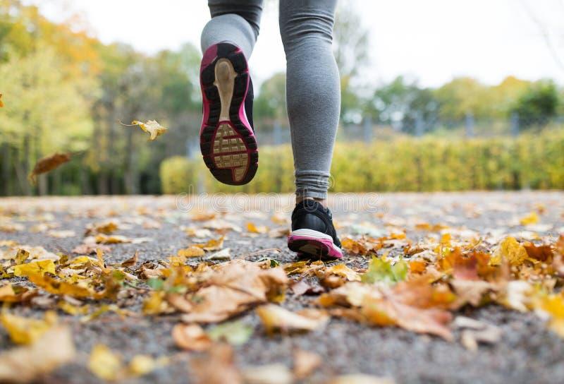 Slutet av spring för den unga kvinnan i höst parkerar upp arkivbild