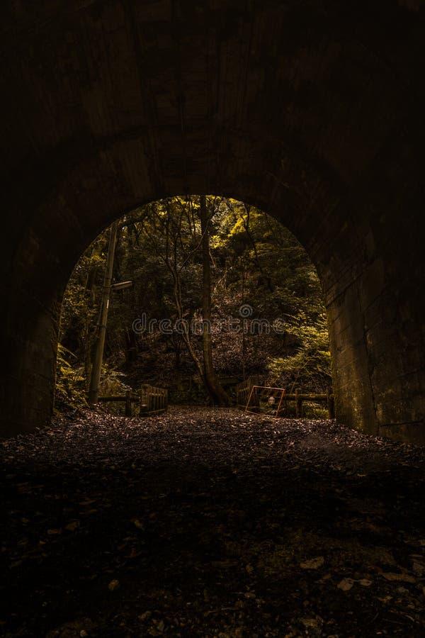 Slutet av tunnelen kommer med ljuset i gröna signaler, en passage till ingenstans arkivbilder