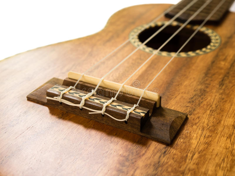 Slutet sköt upp av ukulelebron arkivbilder