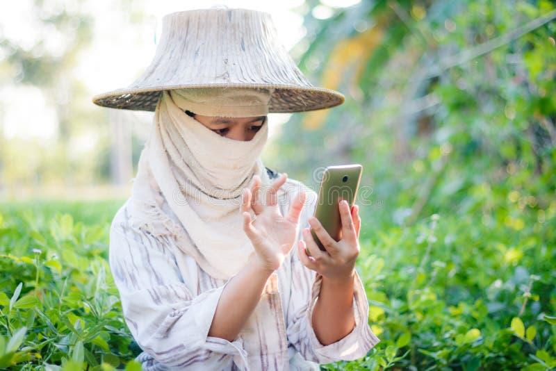 Slutet sköt upp bonden som använder den mobila smartphonen i naturlantgården royaltyfri bild