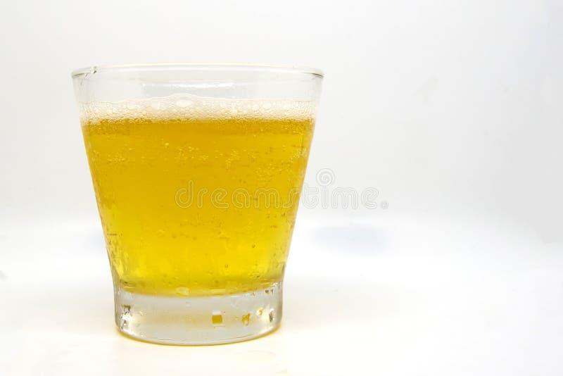 Slutet upp ölexponeringsglas har öl i exponeringsglaset på whithbakgrund royaltyfri foto