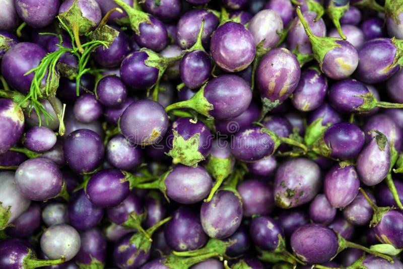 Slutet upp thailändsk lilaaubergine många säljs i en marknad royaltyfria foton