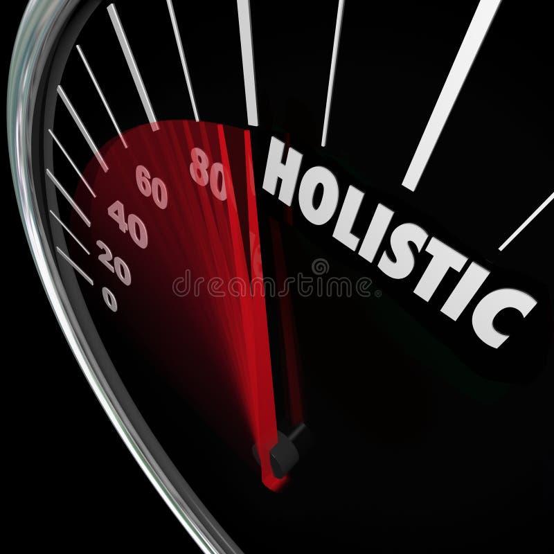 Slutsumma hela Approa för jämvikt för holistisk hastighetsmätaremeningskropp vård- stock illustrationer