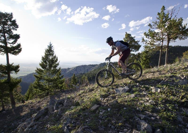 Sluttande mountainbike arkivbilder