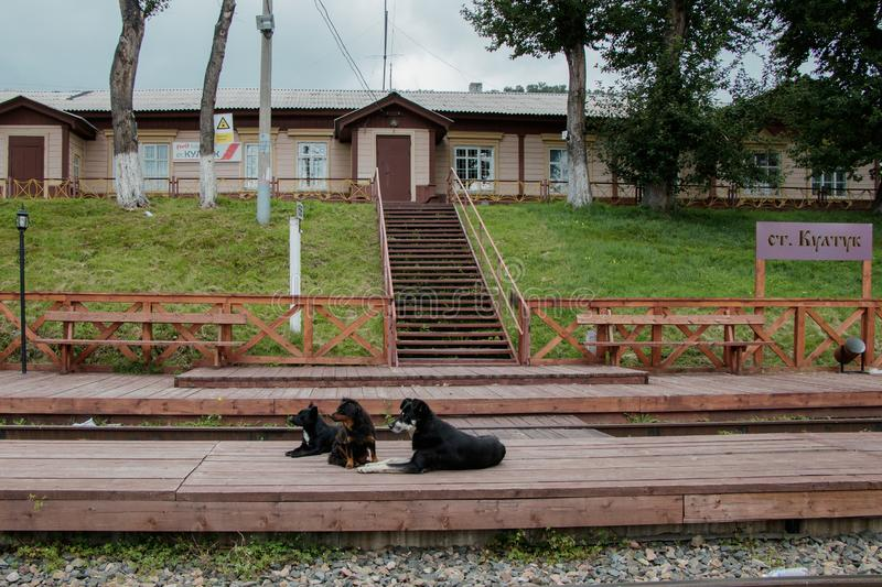 Kultuk station of old part of Circum-Baikal Railway. In foreground, local residents royalty free stock image