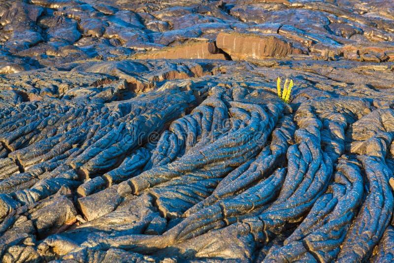 Smält kyld lava royaltyfri foto