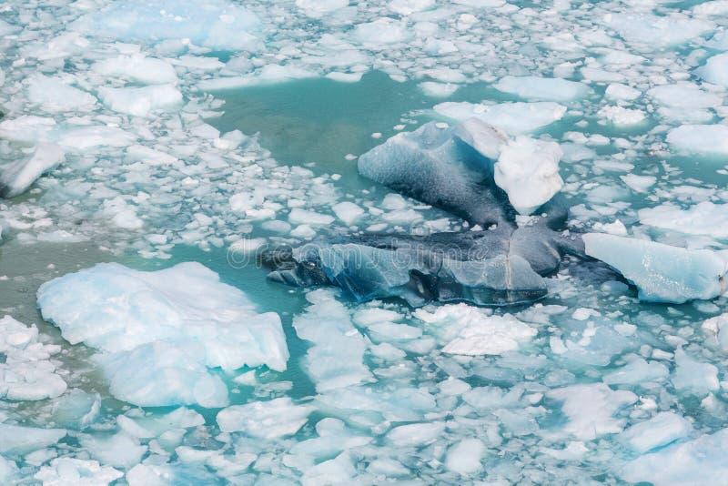 Smältande isberg royaltyfria bilder