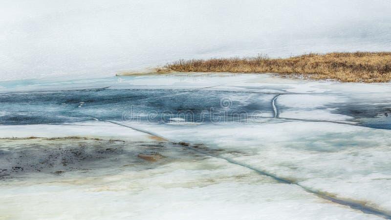 Smältande is och snö på träsket royaltyfri bild