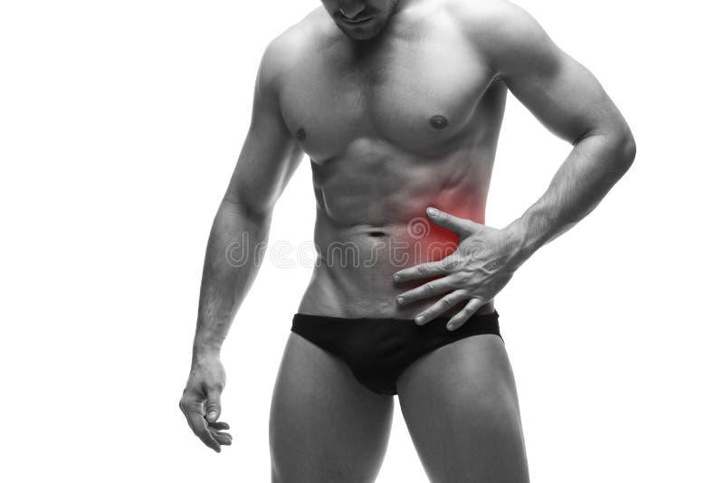 Smärta i vänstra sidan av den muskulösa manliga kroppen bakgrund isolerad white arkivbild