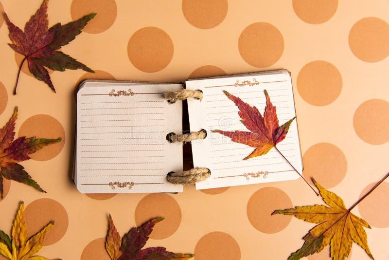 Små anteckningsbok- och höstblad på en tabell royaltyfria foton