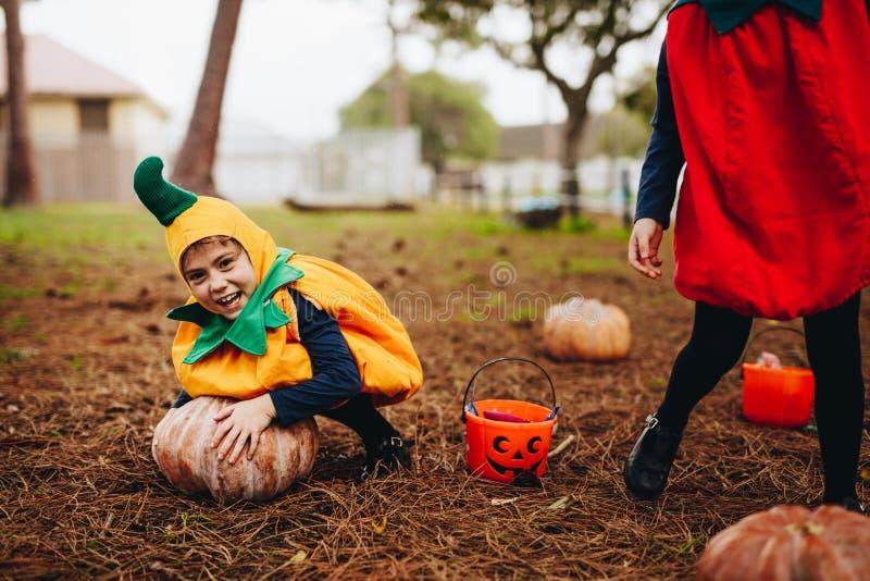 Små barn som har gyckel på halloween royaltyfria foton