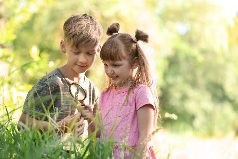 Små barn som utomhus undersöker växten royaltyfri foto