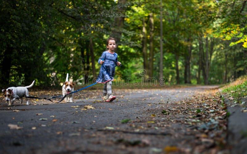 Små caucasian ungar som kör runt om hösten, parkerar med hundkapplöpningen arkivbilder