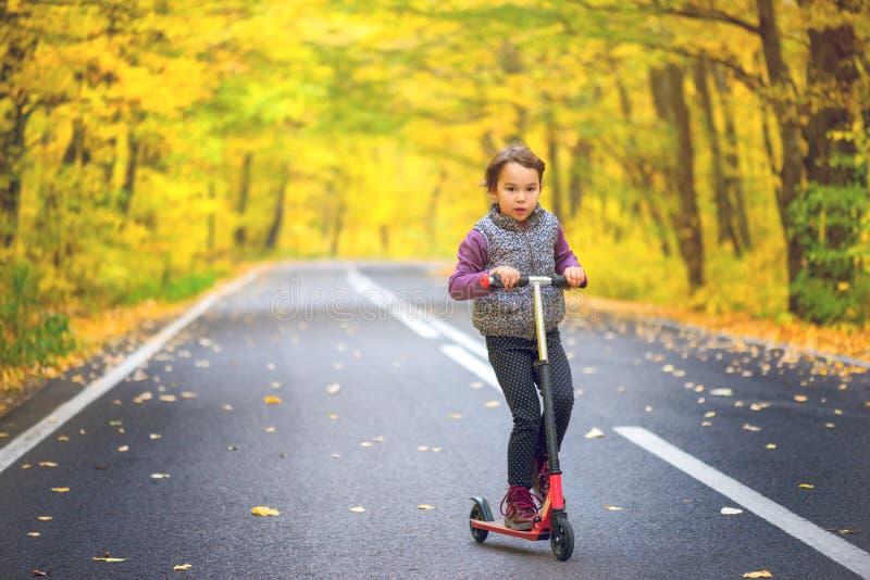Små flickor tycker om hennes sparkcykel parkerar in i höstsäsong arkivfoto