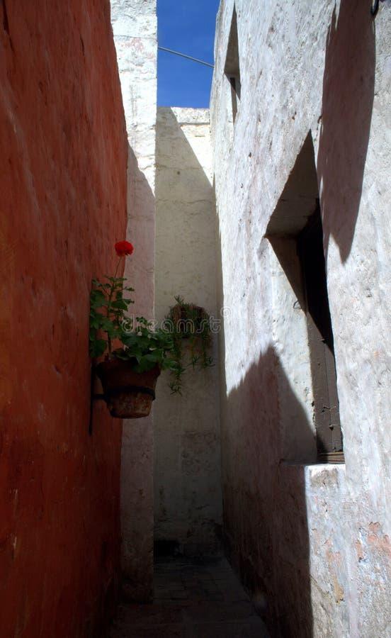 Små gator av Santa Catalina Monastery i Arequipa royaltyfri bild